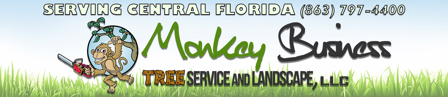 Monkey-Business-Tree-Service-Landscaping-Central-Florida
